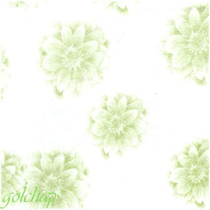 گل داوودی-کد1137-120