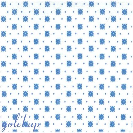 گیشنیز-کد1088-120