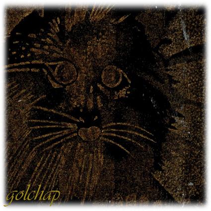 گربه ای-کد1023-160